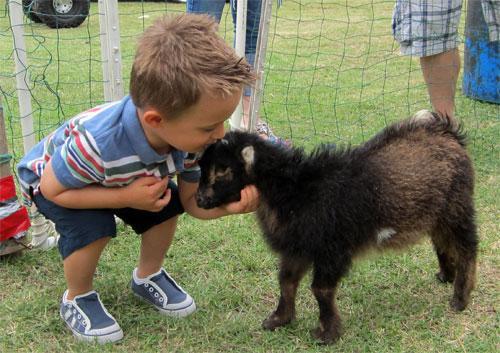 Контактный зоопарк - радость для взрослых и детей!