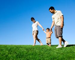 Здоровье будущего отца – залог крепкого потомства