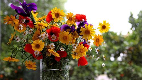 Цветы: не забывайте делать женщинам приятно