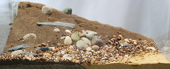 Грунт для домашнего аквариума: правила выбора